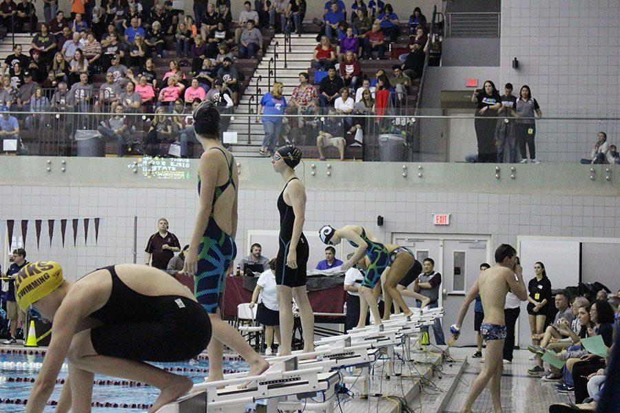 Swimming into state