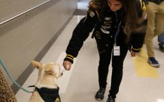 Therapy dogs bring happiness to campus