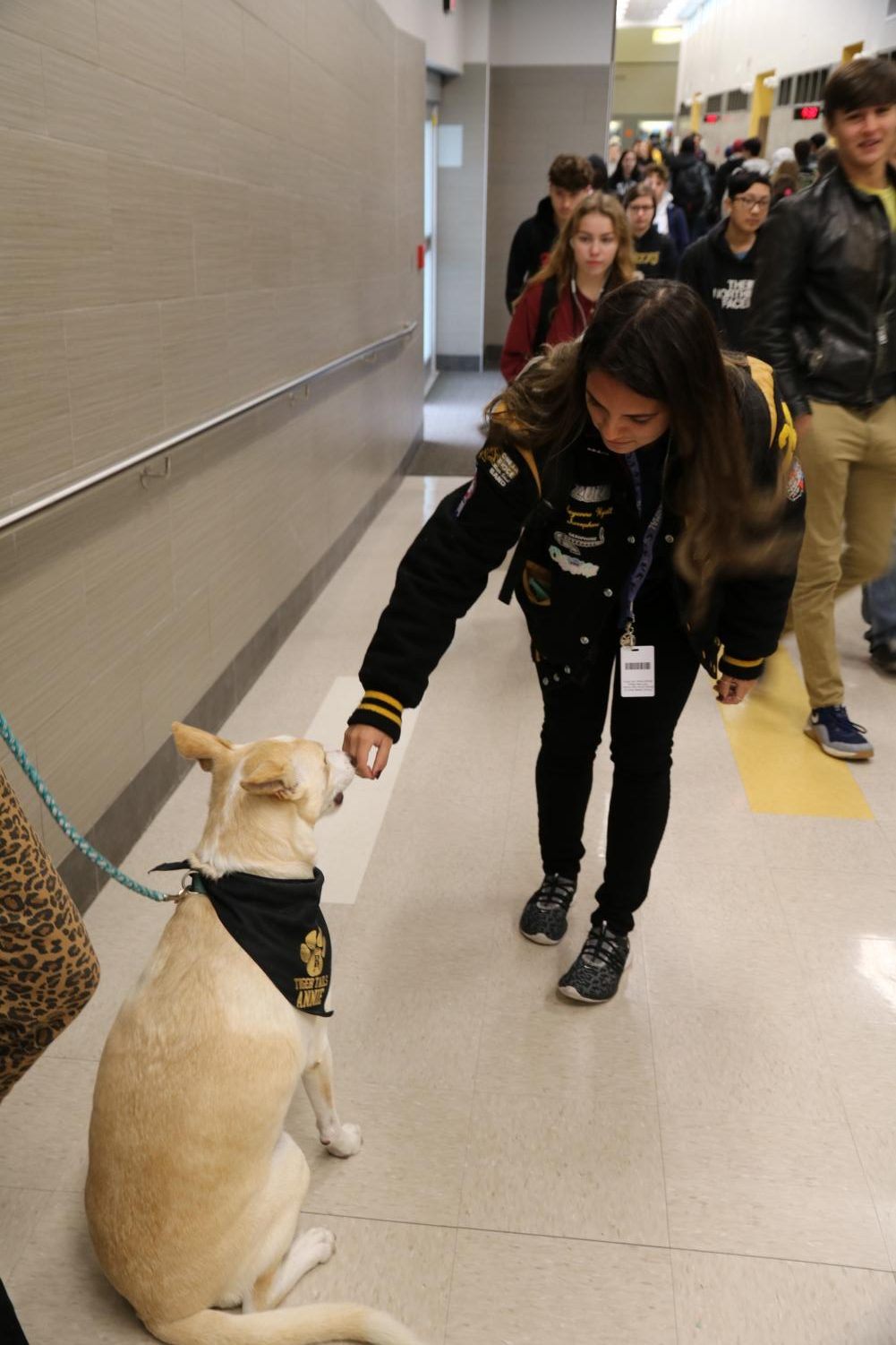 Therapy dogs are often seen in the hallways on Thursdays.