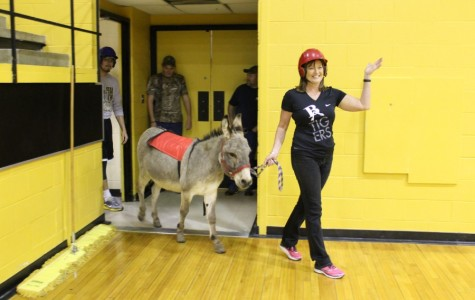 Donkey basketball provides laughs