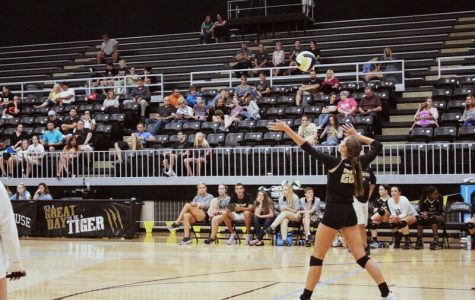 BA volleyball finding its groove