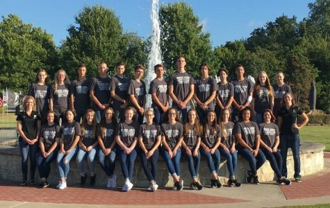 Tiger swimmers take on Conference meet