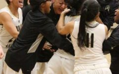 Tiger buzzer beater yields overtime win