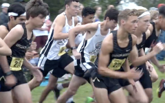 2018 Cross Country State Preview