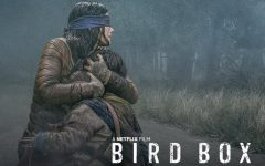 Bird Box blinds critics with record setting opening week