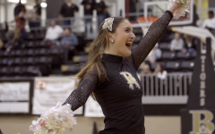 Broken Arrow Tigettes State Preview